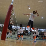 volleyforli1