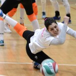 volleyforli4